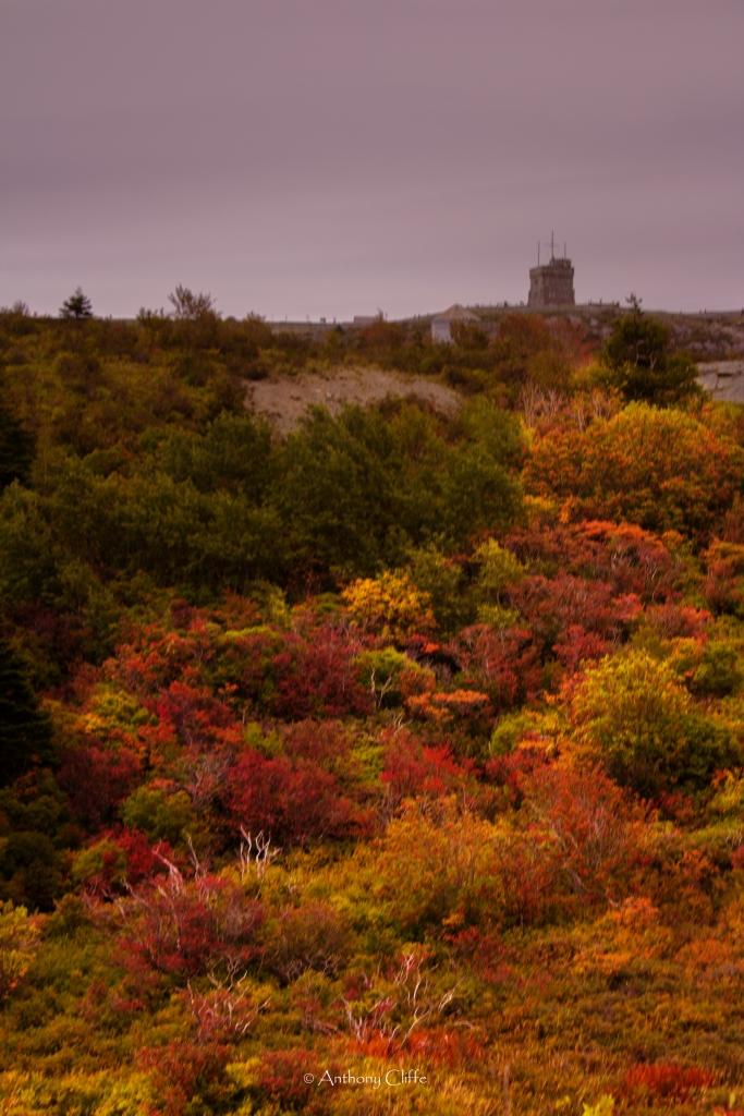 St. John's in the Autumn